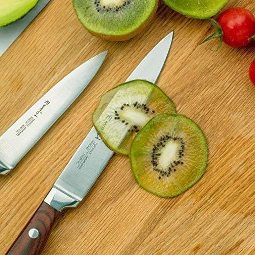 Knife Set, 6 Piece Kitchen Knife with Block Wooden, Chef Knife Set, Emojoy